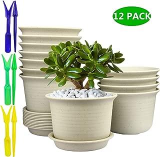 Best large flower pots cheap Reviews