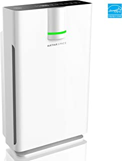 Hathaspace Smart True HEPA Air Purifier 2.0 for Extra-Large Rooms with Medical Grade H13..