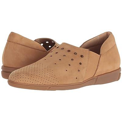 3f1d2e029bee8 Sesto Meucci Ditty (Camel Soft Nubuck) Women's Shoes