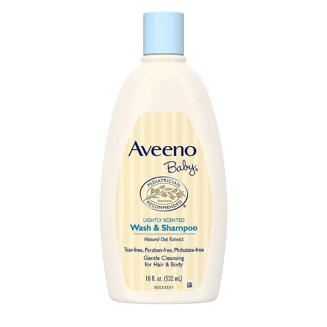 補正財団貝殻Aveeno Baby Wash & Shampoo 18 oz.