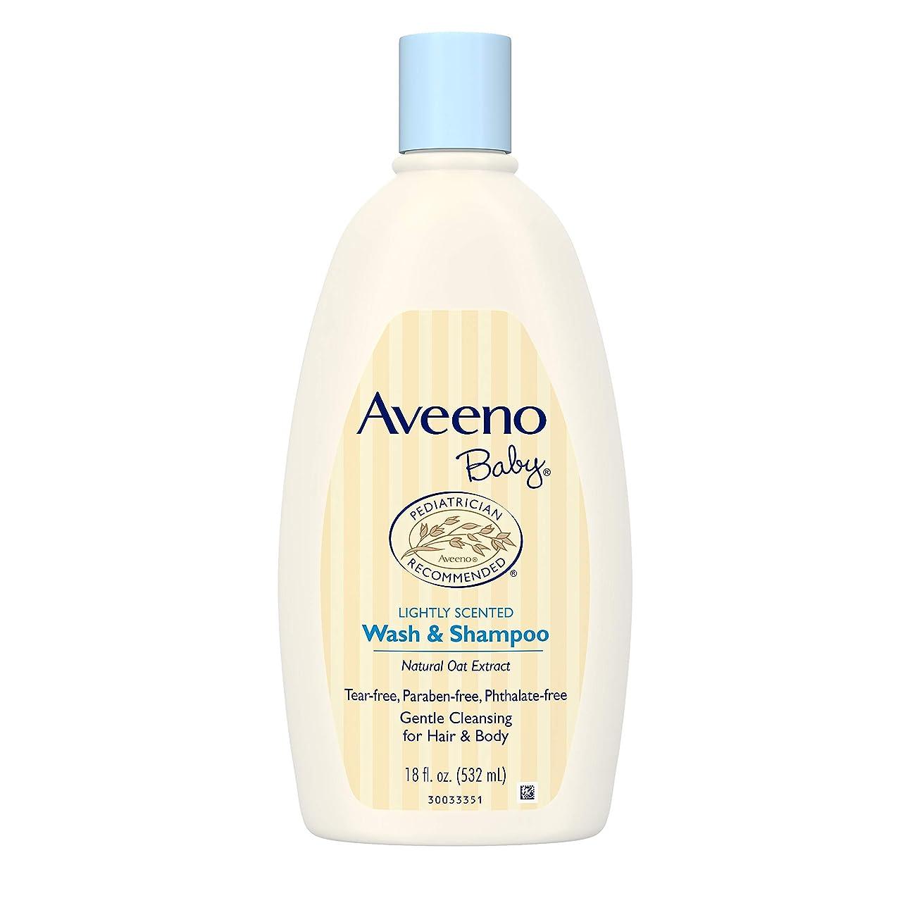 スリップシューズ考古学者思いつくAveeno Baby Wash & Shampoo 18 oz.