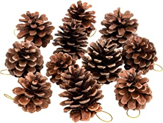 Whaline Natural Pine Cones, Christmas Rustic Pinecones Bulk Ornaments with String for Crafting for Home Accent Decor, Fall...