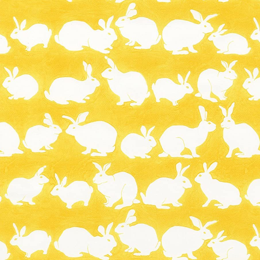 Entertaining with Caspari Continuous Gift Wrapping Paper, Rabbit Hutch, Yellow, 5-Feet, 1-Roll