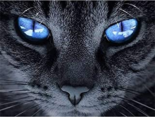 DIY 5D Diamond Painting Full Round Drill Kits Rhinestone Picture Art Craft for Home Wall Decor Blue Eyes Black Cat 9.5x12.6In