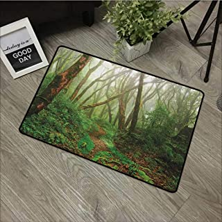 Learning pad W35 x L59 INCH Forest,Spooky Tropical Exotic Fog Jungle in Rainforest Nepal Asian Climate Picture Print, Green Brown Our Bottom is Non-Slip and Will not let The Baby Slip,Door Mat Carpet