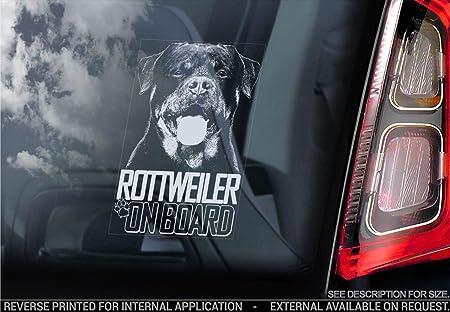 Cane Firmare Finestrino Bianco//Trasparente Sticker International Boxer Cane Paraurti Adesivi Regalo Esterno Stampa 185x100mm V002 Adesivo Auto