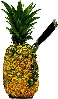 pineapple mango song