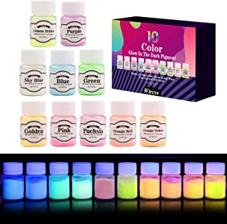 Glow in The Dark Pigment, Wtrcsv 10 Color Luminous Powder Non-Toxic Safety Pigment Powder for Paint, Slime, Nails, Resin, Concerts or DIY - 20g/0.7oz Each(Total 7oz)