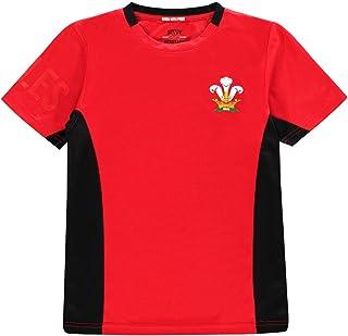 ウェールズ (Wales) ラグビー 半袖Tシャツ ボーイズ ジュニア ファングッズ Rugby Poly T Shirt Junior Boys