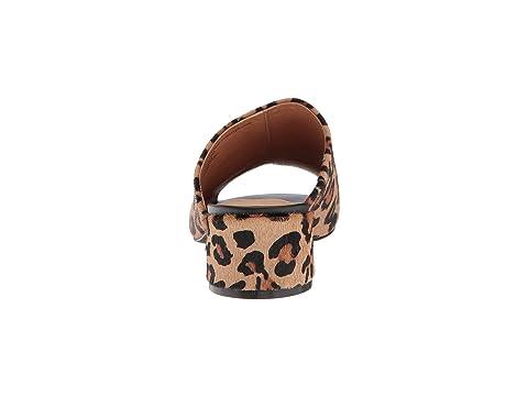 Leopardlizard Ofertas Matisse Ofertas Damisela Leopardlizard Matisse Hzqxdpw8q1