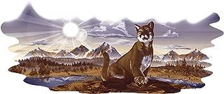 wildcat camper decals