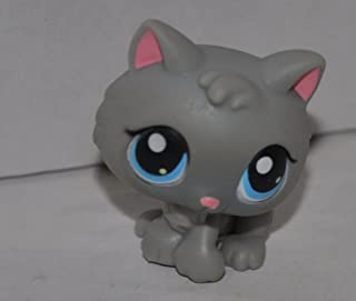 Kitten #66 (Grey, Blue eyes) - Littlest Pet Shop (Retired) Collector Toy - LPS Collectible Replacement Single Figure - Loose (OOP Out of Package & Print)