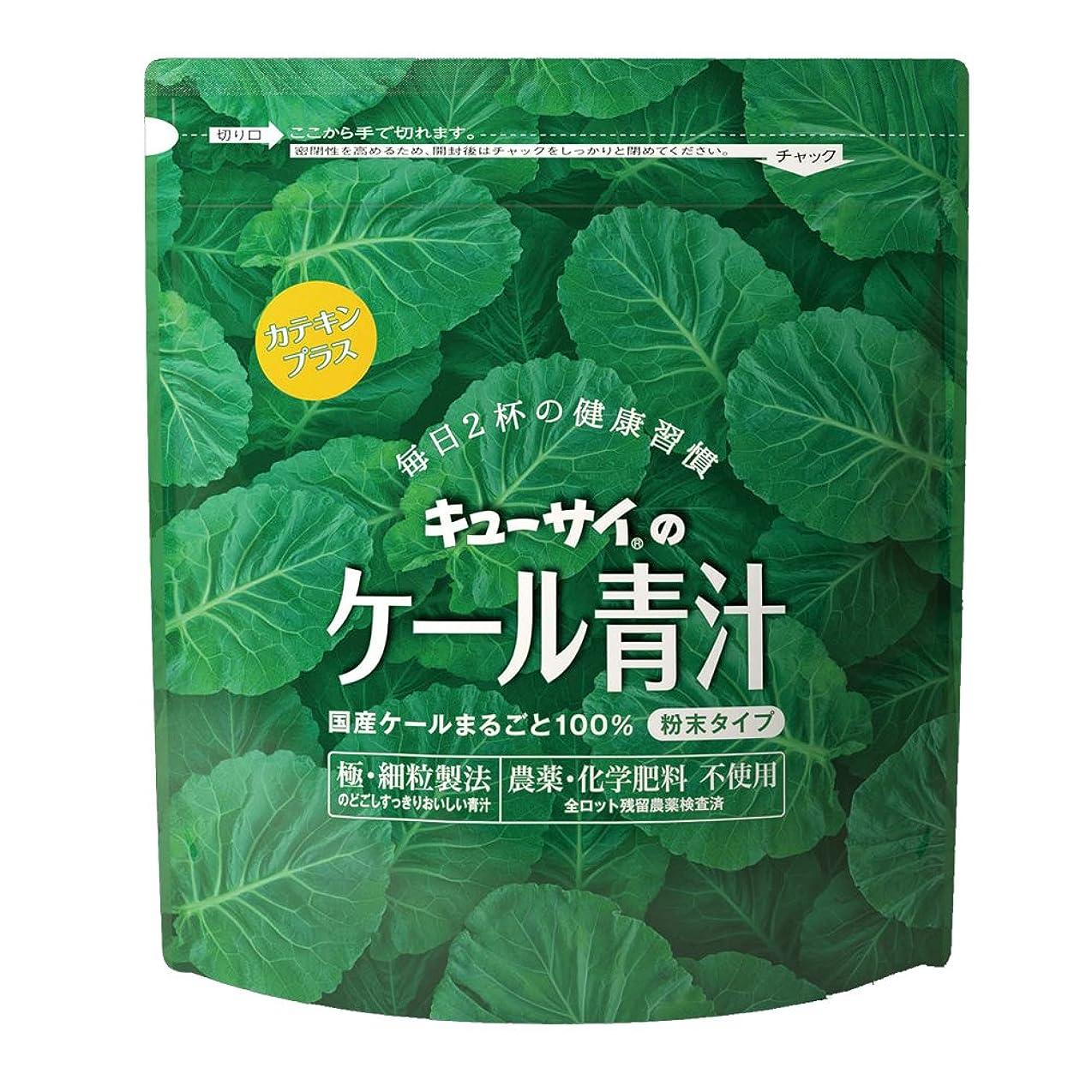 質素なリゾートジャグリングキューサイ 青汁カテキンプラス420g(粉末タイプ)/国産ケール100%青汁にカテキン配合【1袋420g(約1カ月分)】