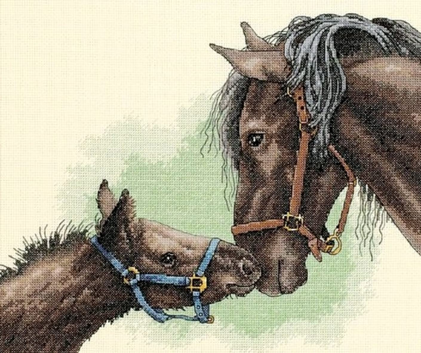 Dimensions Needlecrafts Counted Cross Stitch, Mother and Colt