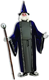 Men's Wizard Adult Costume, Purple