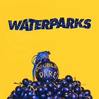 Best double dare waterparks Reviews