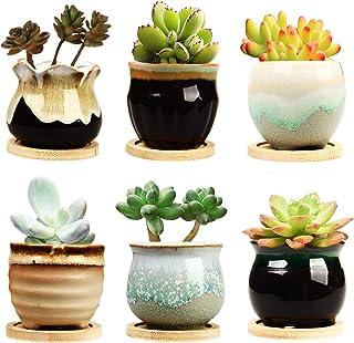 گلدان پلاستیکی موجدار 2.5 اینچی گلدان با زهکشی ، گلدان گلدان مخصوص گلدان ، گلدان های کوچک مخصوص گلدان ، باغ ، کاکتو ، گلدان موج دار ، گلدان های کوچک گل با سوراخ ها ، مجموعه سریال پایه گلشی سرامیکی با گل سرخ