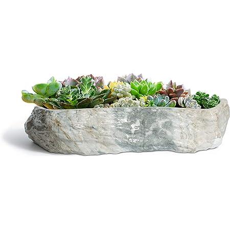 T4U 植木鉢 多肉植物鉢 サボテン鉢 横長24cm プランター 底穴付き 観葉植物適用 陶器製 グレー