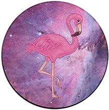 Pink Flamingo Doormat Entrance Mat Floor Mat Rug Indoor/Outdoor/Front Door Mats Non Slip