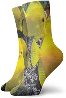 iuitt7rtree Calcetines Deportivos Amarillo Tang Ocean Fish Calcetines Deportivos Diseñador Anti Bacterial Olor Cushion Sho...