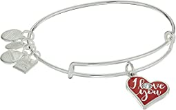 Alex and Ani - Color Infusion, I Love You Bracelet
