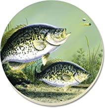 CounterArt Reel Time Crappie Absorbent Coasters, Set of 4