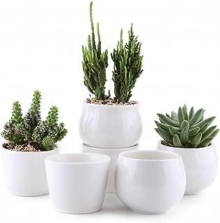 T4U Ceramic Succulent Pot White Set of 6, 2.5 Inch Cactus Plant Pot Succulent Plant Container Planter for Indoor Home Gardening Office Desktop Decoration