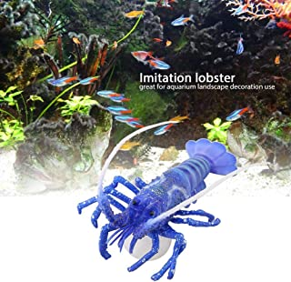 blue lobster aquarium size
