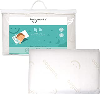 Babyworks Babywork Toddler Pillow with Bamboo case - White , Piece of 1