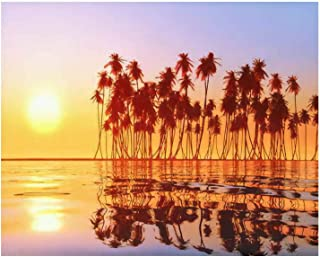 Paint By Numbers coconut palms at sunset over tropic sea Digital Coloring Oil Painting Canvas With Inner Frame Hand-Painted Painting For Kids and Adults Home Decorative