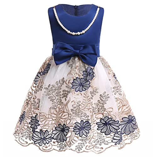 Navy Toddler Dress: Amazon.com
