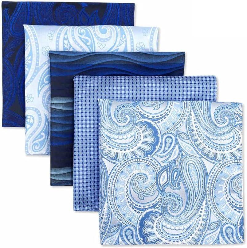 DIAOD 5 Pieces Colorful Assorted Mens Pocket Square Silk Classic Handkerchief Set Gift Colorful (Color : C, Size : 32x32CM)