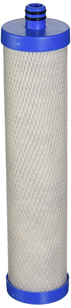 WaterSentinel Water Sentinel Wsk-1 Replacement Water Filters (2-Pack)