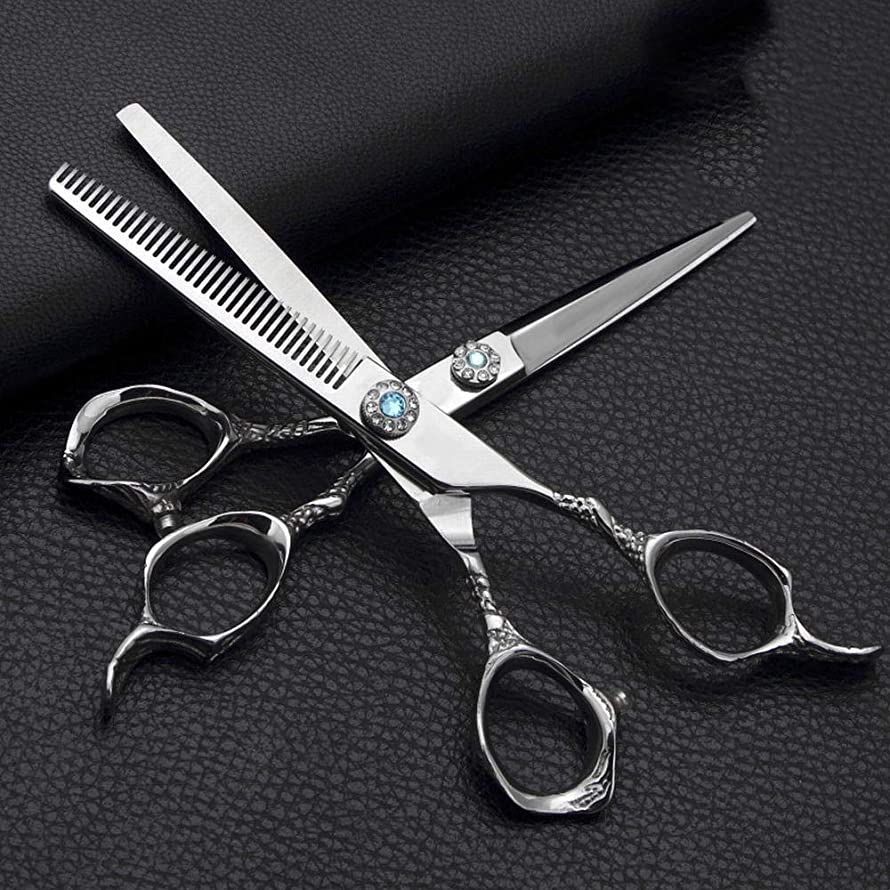 マットレス一目果てしない理髪用はさみ 6.0インチ理髪はさみ、ステンレス鋼フラットせん断+歯はさみ理髪はさみセットヘアカットはさみステンレス理髪はさみ (色 : Silver)