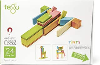 Tegu 24P-TNT-306T Magnetic Wooden Blocks 24pc - Tints