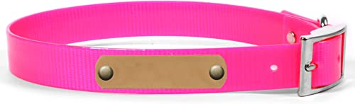 Personalized Waterproof Dog Collar with Name Plate for Large Dogs (Size #23)
