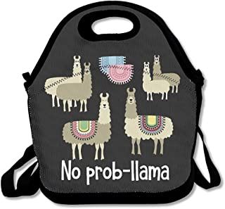 Tribal No Prob-llama Lunch Bags Insulated Travel Picnic Lunchbox Tote Handbag With Shoulder Strap For Women Teens Girls Kids Adults