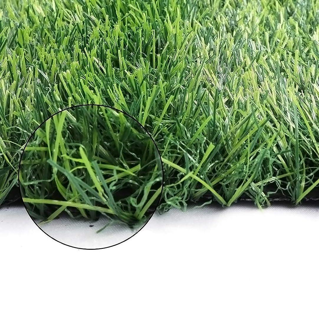 予見する自分の超えてイ草 畳 排水穴およびゴム製裏付けが付いている現実的な人工的な草の敷物の人工的な芝生の敷物、プレミアム肥厚、緑 (Color : 35mm, Size : 1.5mX2m)