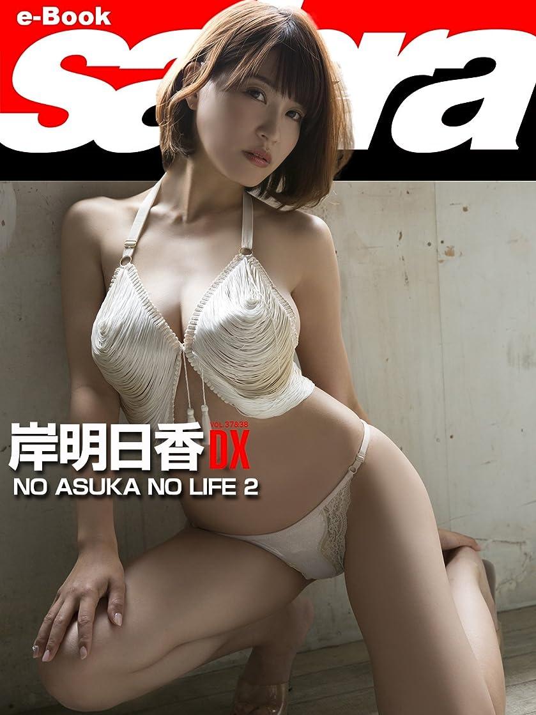 速い日混乱したNO ASUKA NO LIFE 2 岸明日香DX [sabra net e-Book]