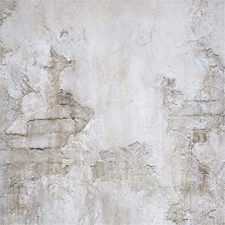 Laeacco Rock Wall Photography Backdrops for Studio 8x8ft Vinyl Studio Backdrop Customized Photography Backdrop Stone Wall Backdrop Grunge Antique Ingredient Rough Wall Retro Architecture
