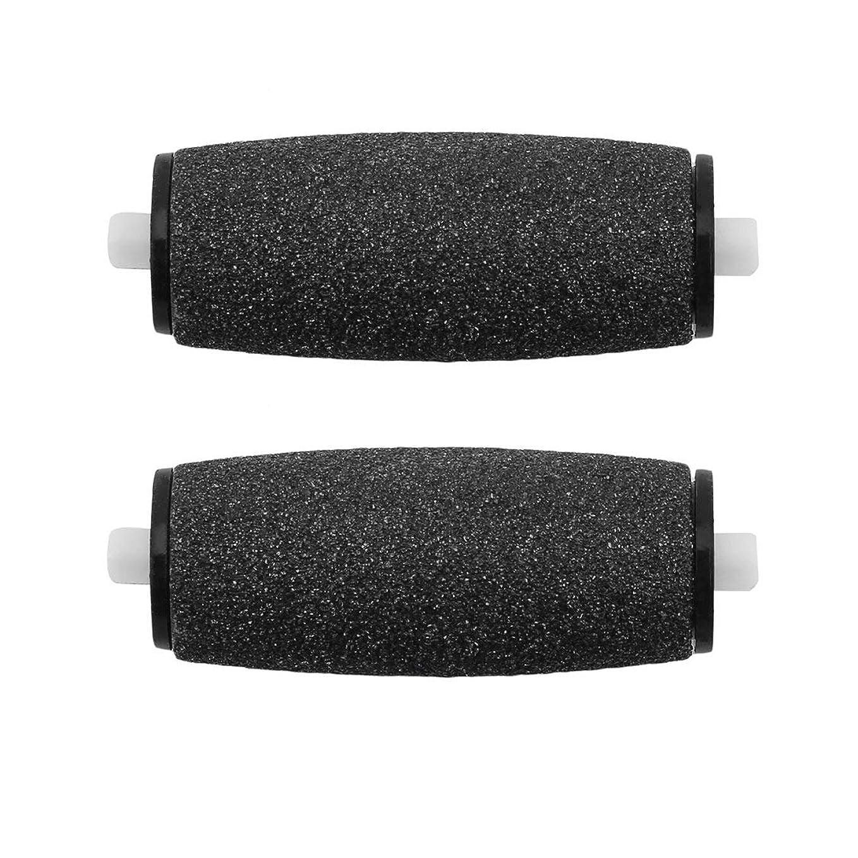 滑らかな足のペディキュアスキムリムバーアクセサリーキムリマバーアクセサリー足研削装置用の2本の交換用ローラーヘッド
