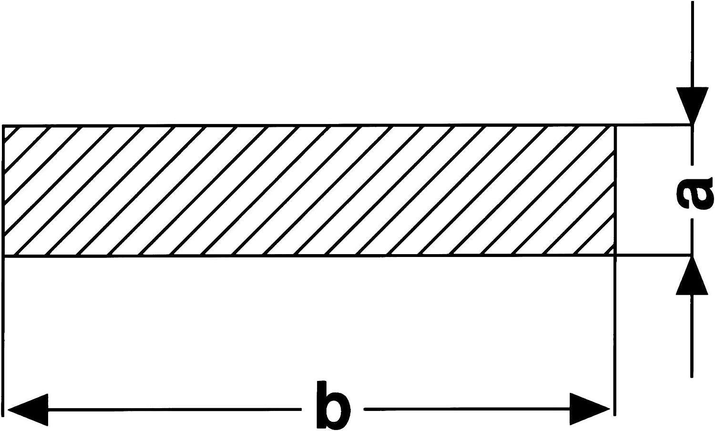 1,5 m gewalzt Bandstahl 1.4301 V2A B/&T Metall Edelstahl Flachstahl L/änge ca roh Ma/ße 50 x 5 mm