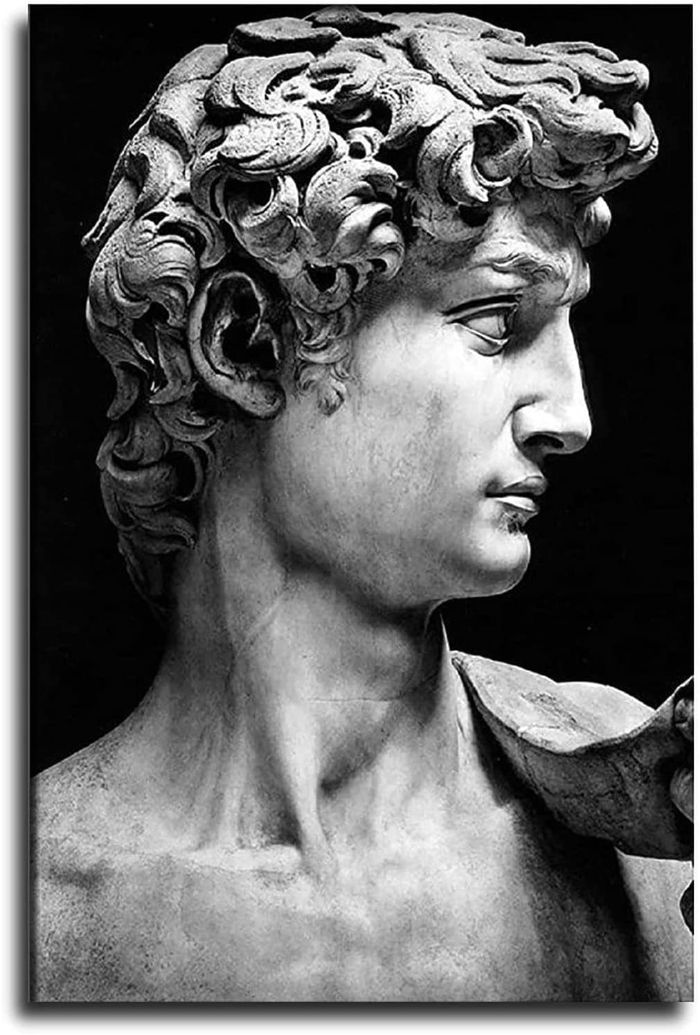 ZHUOLIN Nippon regular agency Greece Ranking TOP9 Mythology Decorative Sculpture David Art Canvas P