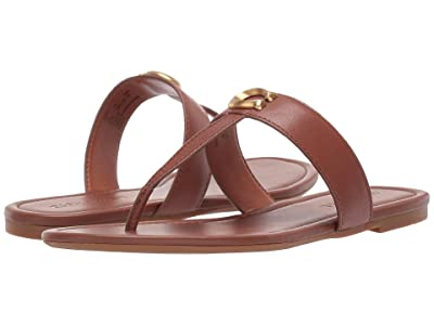 COACH Jessie Thong Sandal with Signature Buckle (Saddle Leather) Women