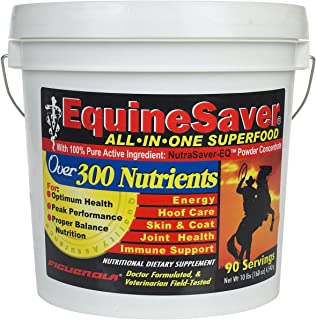EquineSaver Nutritional Supplement for Horses by Figuerola. Contains NutraSaver-EQ: 300 Key Nutrients to Supply Your Horse's Nutritional and Therapeutic Needs for Optimal Health and Performance.