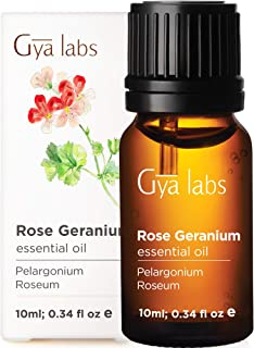 Gya Labs Rose Geranium Essential Oil - Mood Relaxer for Youthful Complexion & Happy Companions (10ml) - 100% Pure Therapeu...