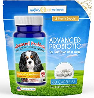 Agatha's Advanced Probiotics for Dogs – 2 Month Supply ? 15 Billion CFUs, 10 Strains ? Improves Digestion, Reduces Diarrhea & IBS, Supports Immune System, Reduces Allergies, Yeast, & Dental Issues