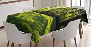 ABAKUHAUS Grön Bordsduk, Rising Sun Beams Forest, rektangulärt bordsskydd för matsal köksdekor, 140 cm x 170 cm, Grön
