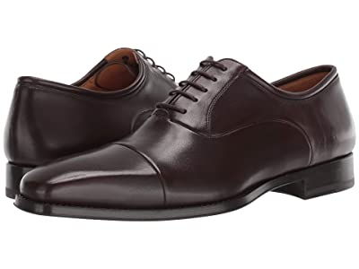 Magnanni Federico (Brown) Men
