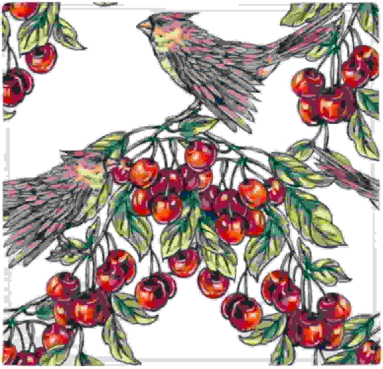 precio al por mayor DIYthinker Alfombrilla Antideslizante para pájaros de de de Fruta, verde, para el hogar, Cocina, Puerta, 80 cm, Regalo  a la venta